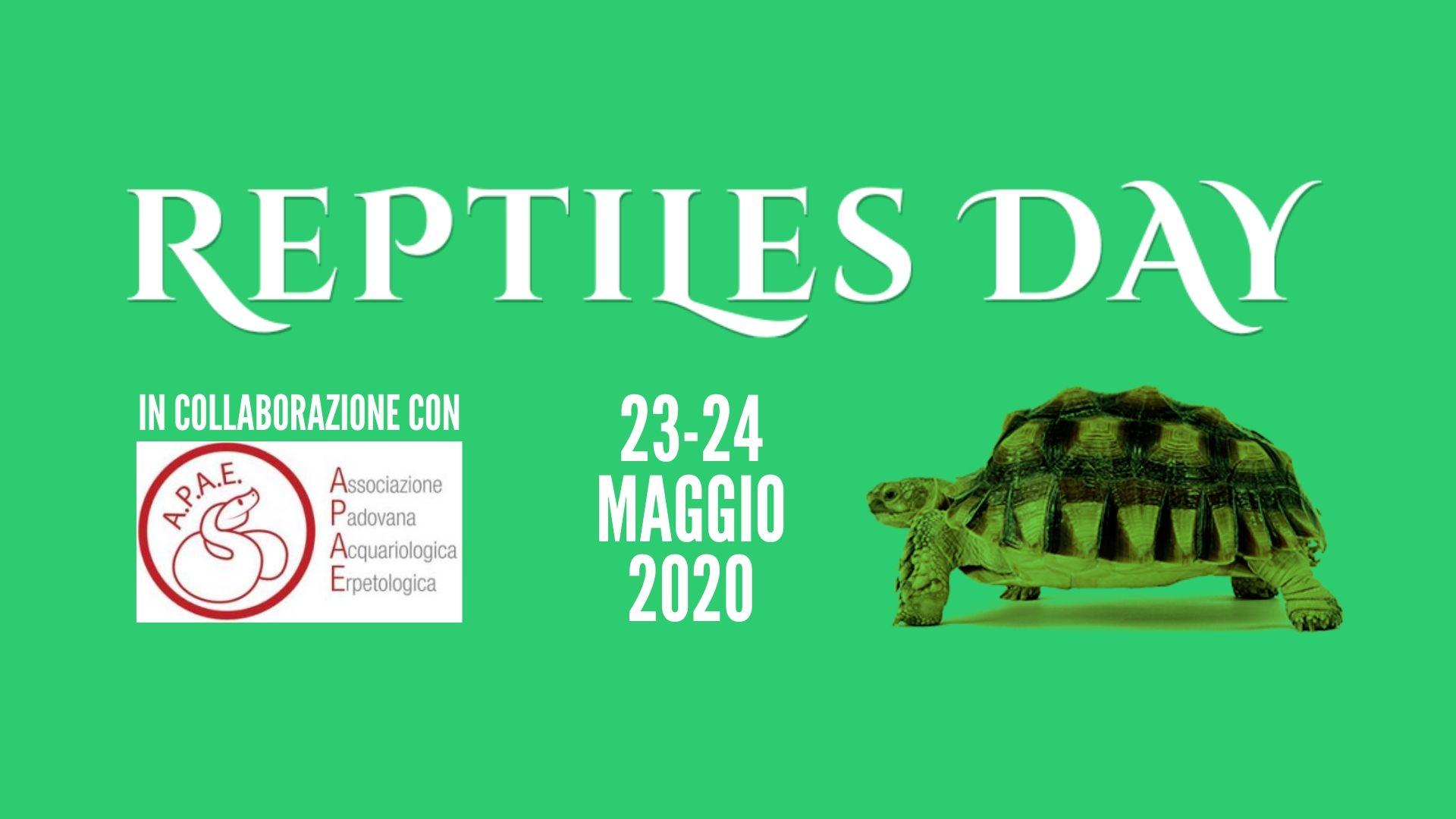 banner reptiles day longarone fiere dolomiti loveitaliafun