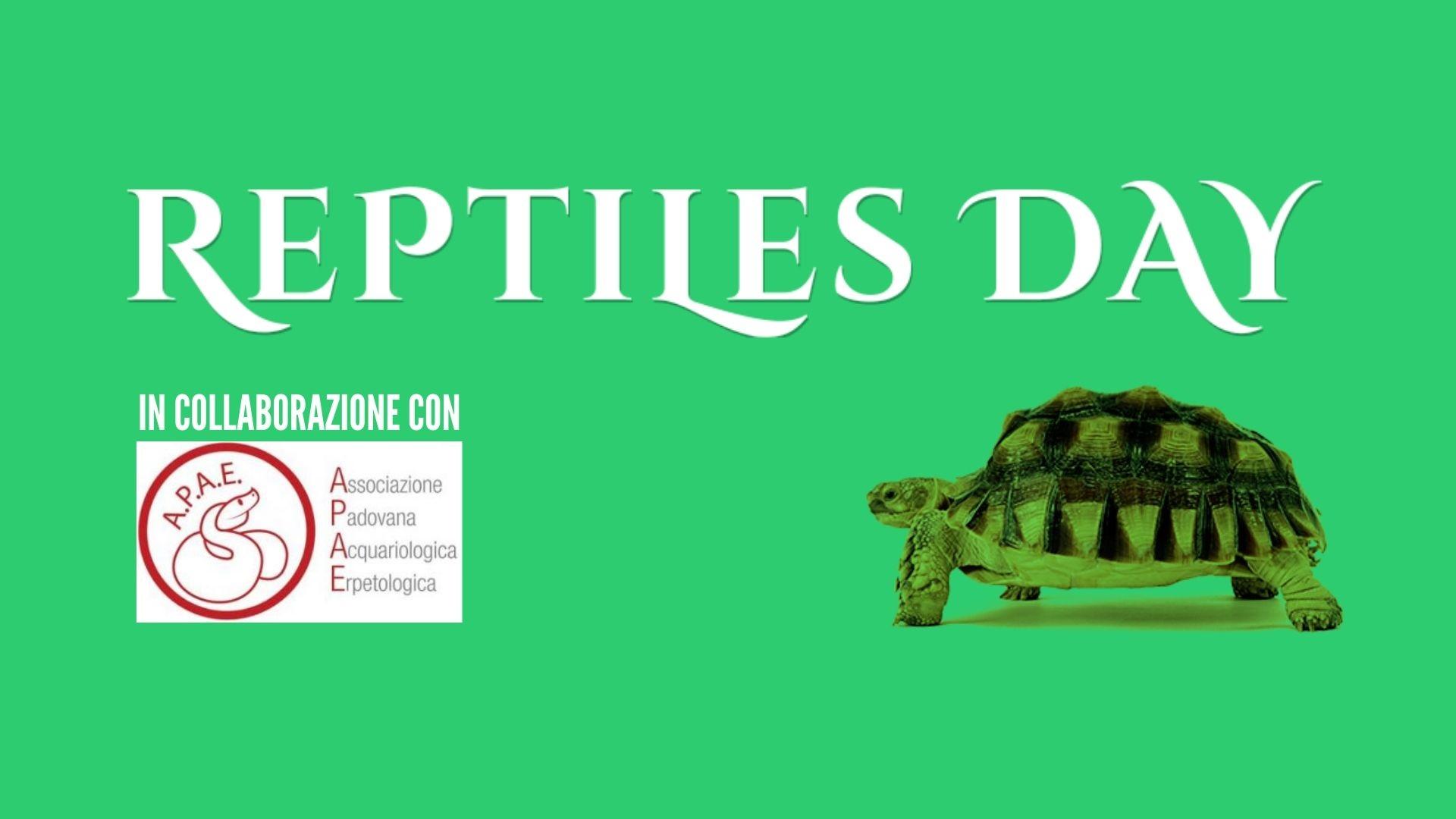 banner reptiles day longarone fiere dolomiti settembre loveitaliafun